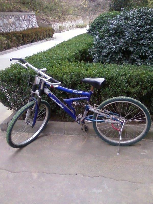 双人自行车传动原理 无链条自行车传动原理 轴传动自行车-自行车后图片
