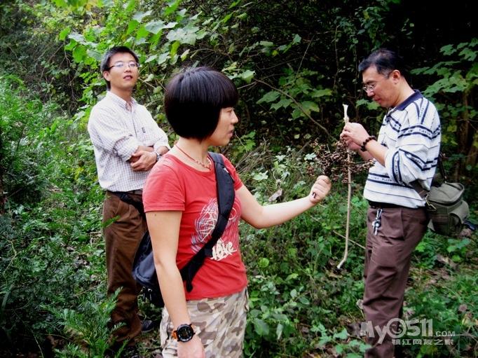 还有梧桐树的种子,炒着吃很香.