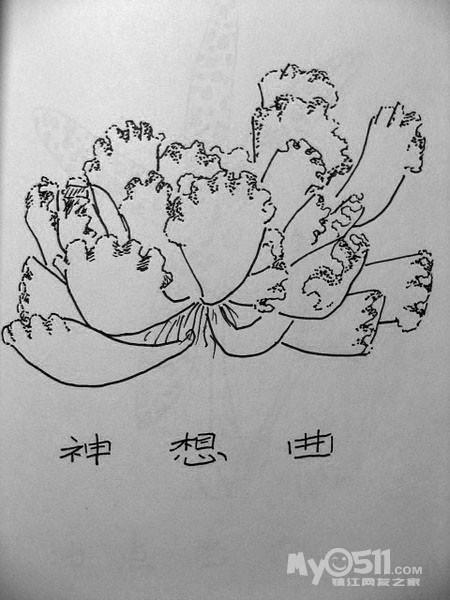 03  梦溪论坛 花鸟鱼虫 03 白描介绍多肉植物(不定时更新ing)  猫