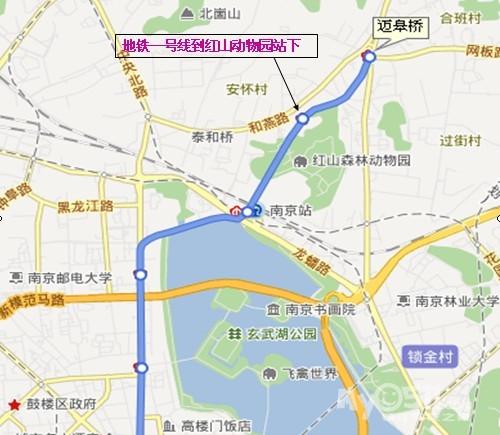 镇江去南京红山动物园夫子庙