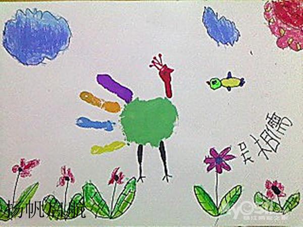 孔雀图片儿童画