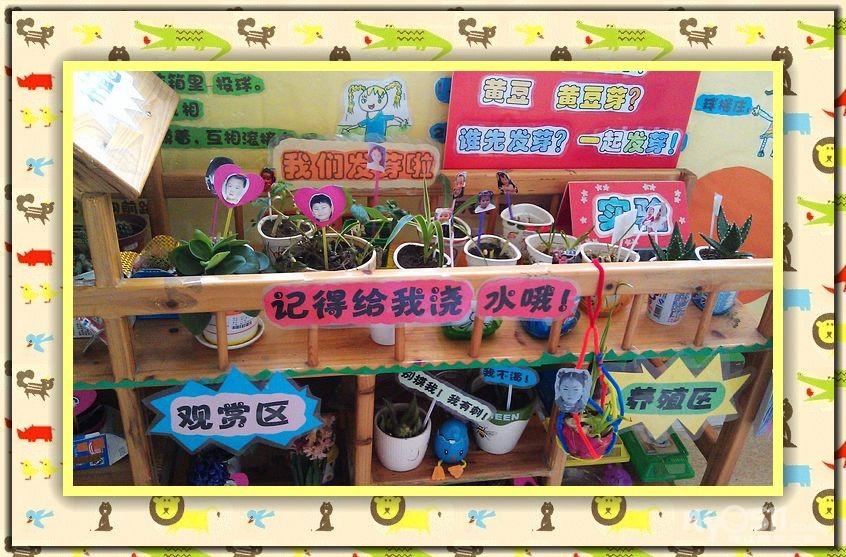 幼儿园自然角标语