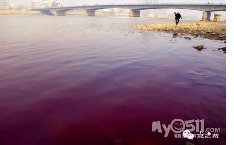 为黄河兰州段遭洪水污染)-转载 中国水污染到底到了什么程度