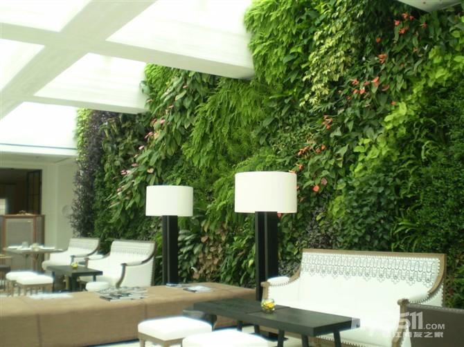 安个植物墙 室内治污染 每100平方米室内安装2平方米的植物墙,就可有效治理室内空气污染。北京晨报(微博)记者近日从京津冀立体绿化治理雾霾论坛上获悉,幼儿园、学校、医院、商场、火车站、地铁等公共设施如在室内种植绿墙,将有效降解PM2.5,净化室内空气。 中国室内环境质量监督检验中心主任宋广生教授专门负责植物墙项目相关数据检测。他在论坛上表示,美国国家宇航局曾就植物是否可以去除航天器里的空气污染物开展过试验,答案是肯定的。受此影响,我国早在10多年前就开始了植物墙对空气污染降解作用的数据监测试验。