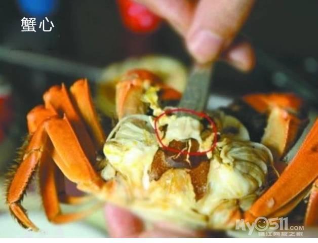 如何分辨螃蟹公母:-挑螃蟹 洗螃蟹 做螃蟹 吃螃蟹技巧,人手一份收好图片