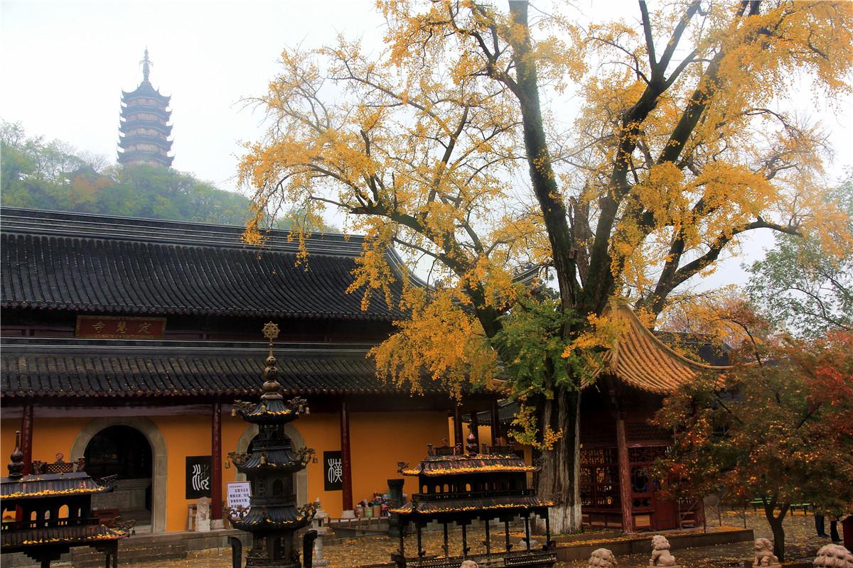 图片拍于镇江焦山风景区