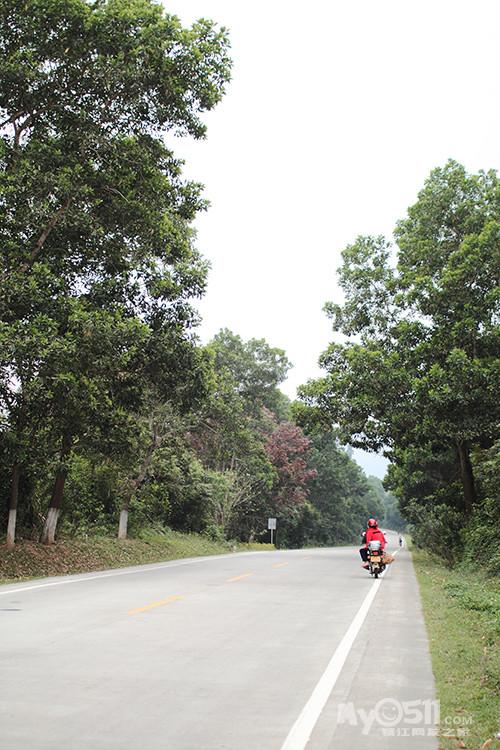 在南桥乡买了一袋小橘子,十多个吧,没走多远就一直惦记着,在路边图片