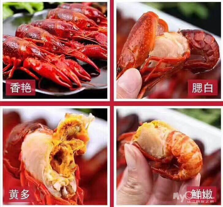 特供网红食品——麻辣小海鲜,小龙虾
